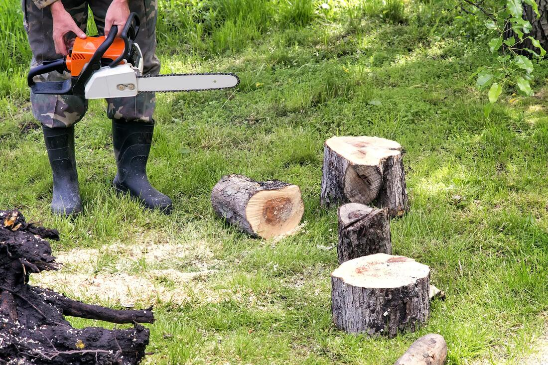 Tree Service-San Marcos TX Professional Landscapers & Outdoor Living Designs-We offer Landscape Design, Outdoor Patios & Pergolas, Outdoor Living Spaces, Stonescapes, Residential & Commercial Landscaping, Irrigation Installation & Repairs, Drainage Systems, Landscape Lighting, Outdoor Living Spaces, Tree Service, Lawn Service, and more.